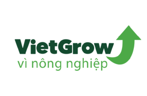 logo-vietgrow-300x195